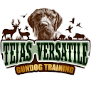 buy here pay here League City dealer review by Tejas Versatile Gundog