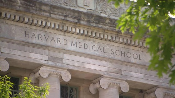 What do i have to do to get into harvard?