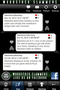 Woodstock Slammers - screenshot thumbnail
