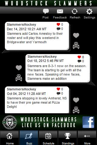 Woodstock Slammers- screenshot