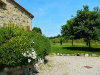 Beringhe Casa Tery_Colle di Val d'Elsa_10