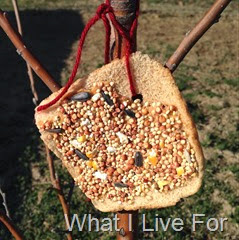 Bread Bird Feeders @ whatilivefor.net
