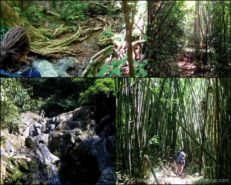 Khao Sok collage 1
