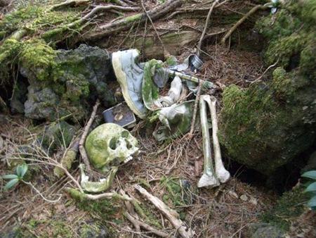 Floresta dos suicídios 05