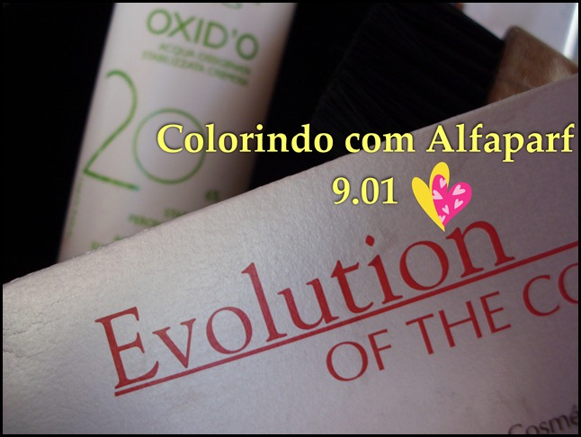 Alfaparf Evolution 9.01