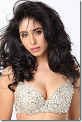 Neha-Bhasin-very hot pics