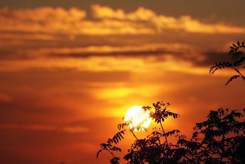 Summer Sunset in Dublin-Peter Robinson.jpg