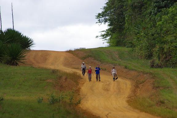 En piste pour Crique Cochon, Saül, 17 novebre 2012. Photo : J.-M. Gayman