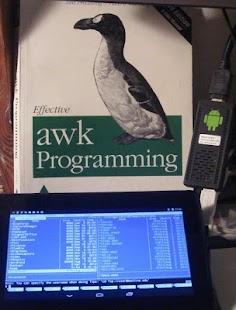 ZShaolin GNU / Linux terminal- screenshot thumbnail