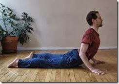 العضلة النيتروجينية: اليوجا و كيف نستعملها بطريقة تساعد في ...