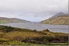 Connemara.-Ctra.-N59-Fiordo-Killary-[5]