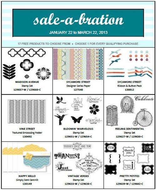 sab 2013 leaflet 1