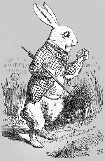 Wikipedia Rabbit Alice_par_John_Tenniel_02