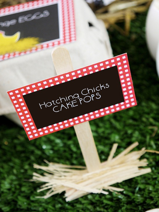 Barnyard Birthday - DIY Dessert Table Signs