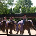 Тайланд 21.05.2012 7-29-31.JPG