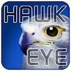 [11-04] Challenge Hawk Eye icon