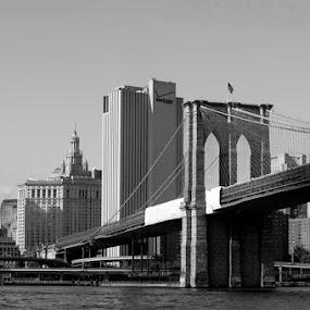 Brooklyn Bridge by Sharmila Narwani - Buildings & Architecture Bridges & Suspended Structures ( brooklyn bridge, black and white, bridge, nyc,  )
