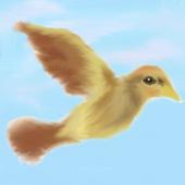 Chase That Bird!