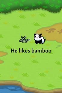 The Last Panda - náhled