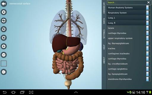 【免費醫療App】Anatomy 3D Pro - Anatronica-APP點子