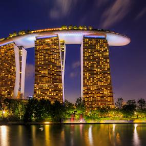 Enjoy the violet dusk in singapore.. by Hendrik Priyanto - City,  Street & Park  Night