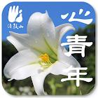 心青年 icon