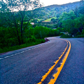 Lovely Lane by Dawnadine Yazzie-Harvey - Landscapes Travel ( mountain, nature, trees, earth, road, beauty, landscape, nm )