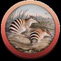 Field Guide to WA Fauna icon