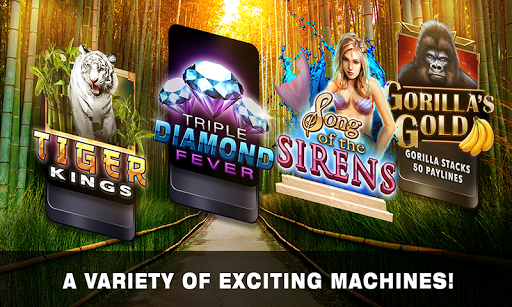 Slots Tiger King Casino Slots screenshot