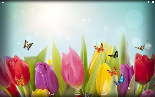 【免費個人化App】郁金香-APP點子