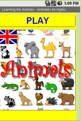 Animales en Ingles- screenshot