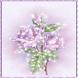 Lavender Roses LWP