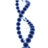 DNA Live Wallpaper 3D Free
