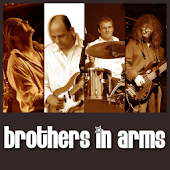 brothers in arms - a tribute t