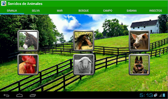 Screenshot of Animals sounds with pictures