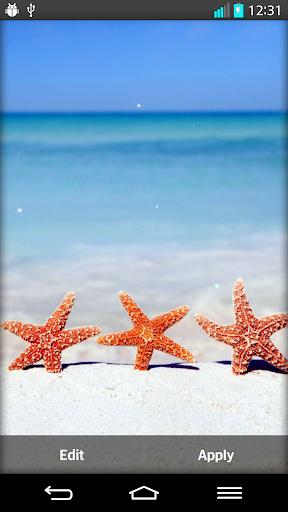 海灘 動態桌布