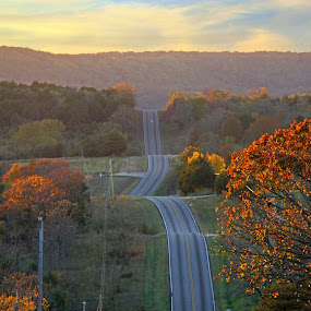 Draped Asphalt by Michael Buffington - Transportation Roads ( hills, distance, asphalt, autumn, road,  )