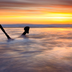 Anchoring light  by Alan Wright - Landscapes Waterscapes