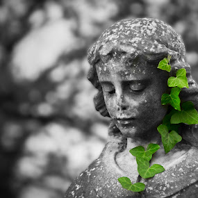 Ivy by Mike Shields - Buildings & Architecture Statues & Monuments ( statue, girl, green leaves, green, cemetery, ivy, gravestone, selective color, pwc )