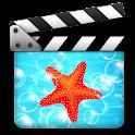 araMovie Pro logo