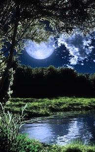 Měsíční Svit živé Tapety - náhled