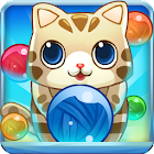 Bubble Cat icon