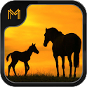 Name that Horse Breed Trivia icon