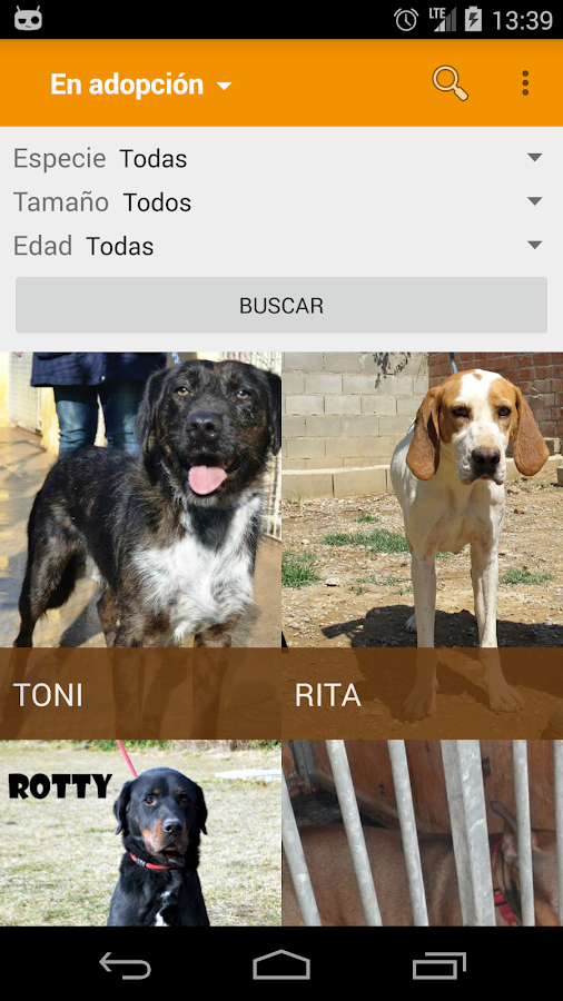 AdoptaPet- screenshot