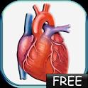 Blood Pressure lite icon