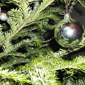 by Cristina Andrei - Public Holidays Christmas
