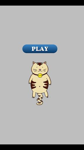 Lucky Jumping Cat