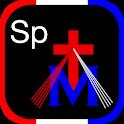 iPieta: Spiritual icon