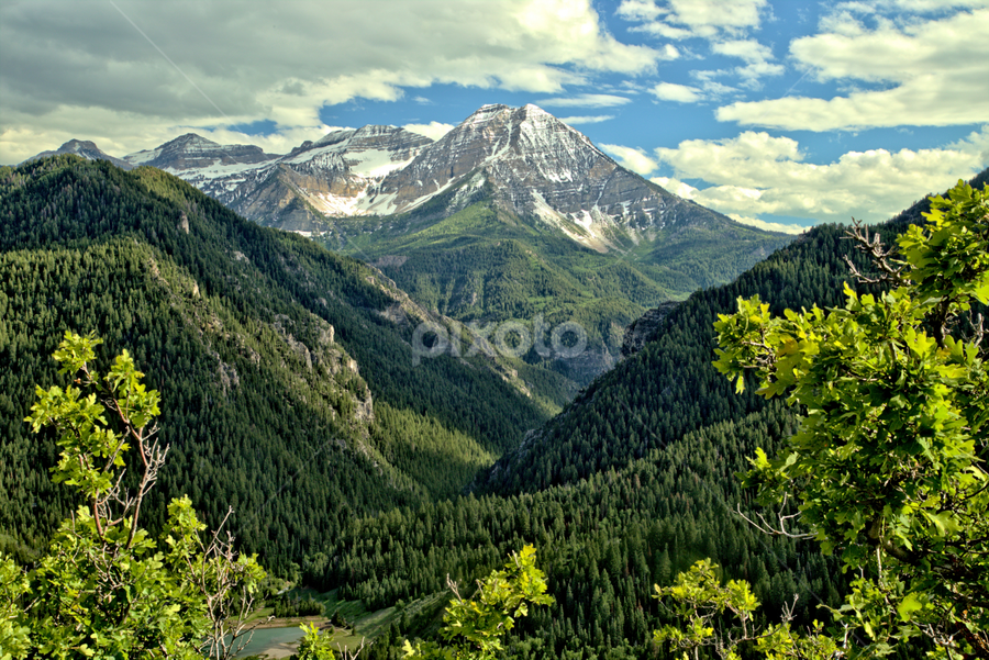 Mount Timpanogos by Roxie Crouch - Landscapes Mountains & Hills ( mountians, mount timpanogos, utah, snow, grren, peaks, aspen, , renewal, green, trees, forests, nature, natural, scenic, relaxing, meditation, the mood factory, mood, emotions, jade, revive, inspirational, earthly )