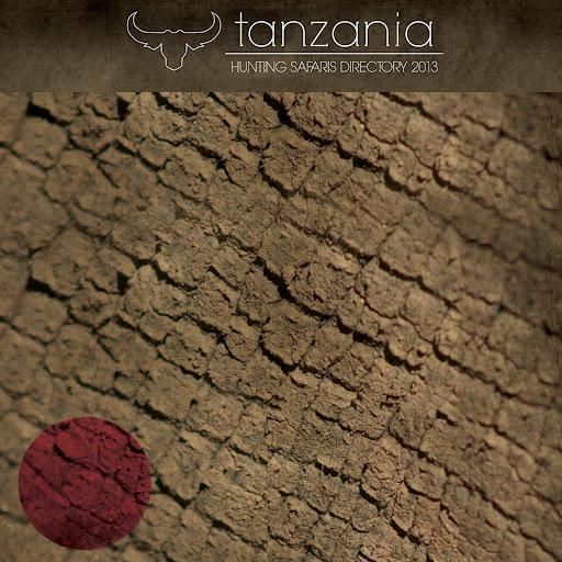 Tanzania Hunting Safaris